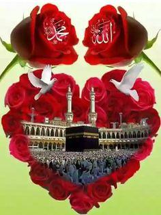 Beautiful Dua, Beautiful Children, Beautiful Flowers, Allah Wallpaper, Islamic Quotes Wallpaper, Allah Calligraphy, Islamic Art Calligraphy, Islamic Images, Islamic Pictures