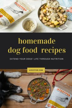 Homemade dog food recipes. Improve your dogs health through nutrition.  #dogfood