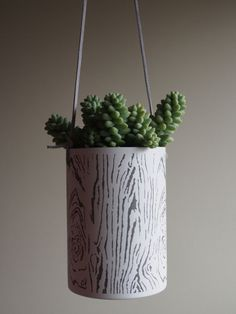 Snow White Bark hanging metal succulent planter by PlantworksPDX