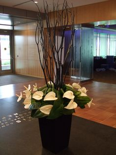 White anthurium and black branches really made this a grand entrance piece - unknown source Tropical Floral Arrangements, Creative Flower Arrangements, White Flower Arrangements, Table Arrangements, Deco Floral, Arte Floral, Ikebana, Hotel Flowers, Corporate Flowers