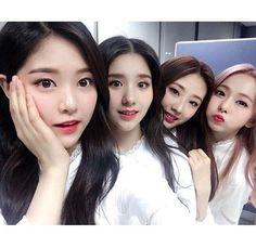Kpop Girl Groups, Korean Girl Groups, Kpop Girls, Sooyoung, Love Live, My Love, Eye Circles, Thing 1, Singing In The Rain