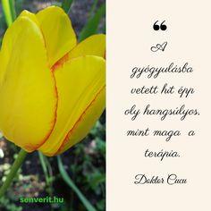 A gyógyulásba vetett hit épp oly hangsúlyos, mint maga a terápia. Feng Shui, Life Quotes, Mint, Quotes About Life, Quote Life, Living Quotes, Quotes On Life, Peppermint, Life Lesson Quotes