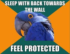 Paranoid Parrot- you know so I can roll out in a hurry if need be.
