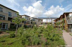 Dans l'éco-quartier de Lanxmeer, chaque îlot d'habitation a son identité propre, et l'ensemble forme un tout harmonieux.