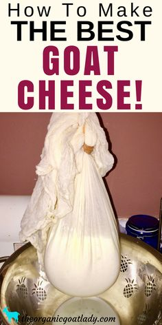 How To Make Goat Cheese! – The Organic Goat Lady How To Make Goat Cheese. The best goat cheese! Making Goat Cheese, Homemade Goats Cheese, How To Make Cheese, Goat Milk Recipes, Goat Cheese Recipes, Greek Recipes, Tofu, Goat Care, Milk And Cheese