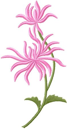 Chrysanthemum free machine embroidery design