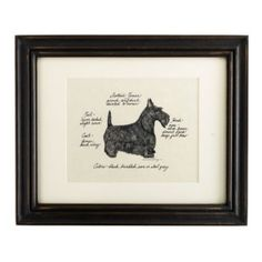 I would love to add this Scottish Terrier Dog Print to my collection.