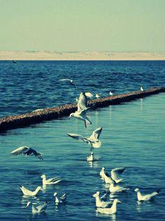 Qarun Lake, Al Faiyum, Egypt