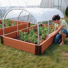 Ag amp;amp; Growing Supplies - Greenhouses amp; Greenhouse Kits - Small Hobby Greenhouses - Patio Growhouses & Cold Frames - Mini Cold Frames