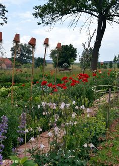 Hof 9: Der Bauerngarten im Juni.....