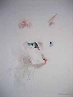 Cat - almost invisible