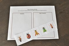 Bugs Cutting Strip and Classification by SortingSprinkles, via Flickr