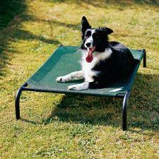 Elevated Indoor/Outdoor Dog Cot
