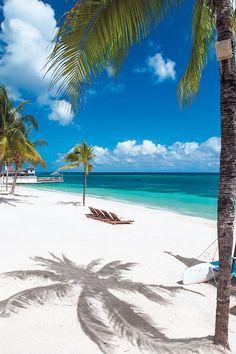 5 Reasons to Visit Montego Bay, Jamaica Jamaica Honeymoon, Visit Jamaica, Jamaica Vacation, Jamaica Travel, Vacation Places, Dream Vacations, Vacation Spots, Places To Travel, Places To Go