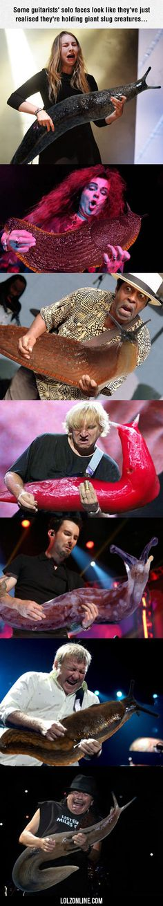 Some Guitarists' Solo Faces... #haha #funny