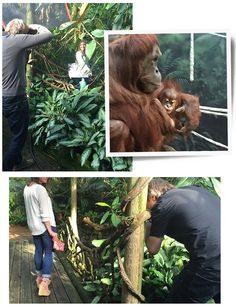 Photo shoot at the zoo for our Six Days of Summer Sparkle!