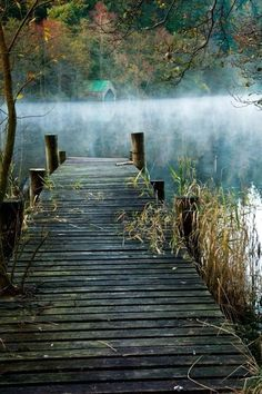 [a pier on a lake] a misty, soothing scene; too bad no title or photographer is listed Beautiful World, Beautiful Places, Beautiful Pictures, Lake Life, Mother Nature, Mists, Serenity, Nature Photography, Around The Worlds