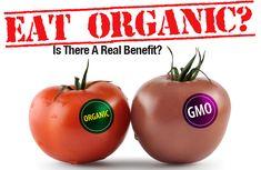 Why Eat Organic Food Organic gardening the correct way farmersme.com/blog