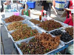 "The practice of eating insects for food is called entomophagy and is fairly common in many parts of the world, with the exceptions of Europe and North America (though bugs are apparently a favorite with the television show ""Fear Factor"")."