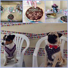 Nocas & Tome #pupcake #dogbakery #petbakery #boloparacão #barkday #pawty #pug #puglovers #jackrussel www.ninamaria.pt