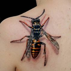 Wasp - i like it ! ;-)