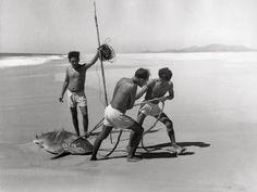 Lola Alvarez Bravo :: Fishermen, Acapulco, Guerrero, Mexico, 1950