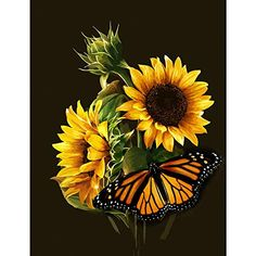 Oil Painting Flowers Art Grey Abstract Canvas Art Gold Leaf Painting On Canvas Gouache Paint On Canvas Michelangelo Oil Paintings Sunflower Pictures, Sunflower Art, Pictures Of Flowers, Sunflower Paintings, Art Pictures, Butterfly Painting, Oil Painting Flowers, Butterfly Quilt, Drawing Flowers