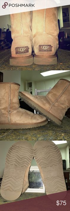 Ugg classic short authentic Absolutely GREAT condition. Worn a few times. Minimum wear on these guys. Enjoy!! UGG Shoes Winter & Rain Boots