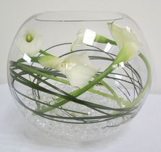 an option for using your fishbowls.