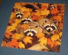 Roving Rascals 500 Piece Square Jigsaw Puzzle Raccoons Leaves Springbok PZL2084 Hallmark COMPLETE $13