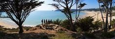 Image result for st brelades bay jersey