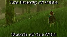 The Beauty of Breath of the Wild - Part 1 - The Legend of Zelda - NO SPO...