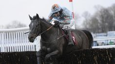 Samstown toughs it out at Haydock - Horse Racing - Erupt Sports