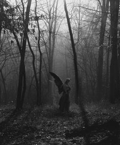 Forest Angel, The Ozarks, Missouri. If I came across this in the forest, I would be seriously alarmed. This looks like a suitable place for a weeping angel to lurk. Statue Ange, Angeles, Cemetery Art, Cemetery Statues, Cemetery Angels, Highgate Cemetery, Angels Among Us, Mystique, Belle Photo