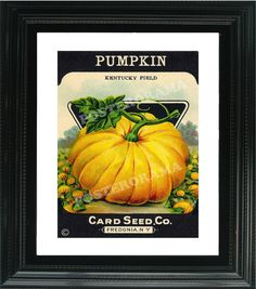 Pumpkin Card Seed Co. POSTER 12 x 16 large unique by POSTERORAMA