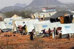 The displacement of more than 35 000 people because of the fighting in Yemen