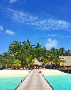 Sun Aqu Vilu Reef #Maldives