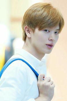 """imagine being this handsome with very minimal effort to actually look good, sungjae can relate"" Sungjae And Joy, Sungjae Btob, Minhyuk, Yongin, Korean Drama Tv, Korean Actors, Btob Members, Kim Sohyun, Asian Cute"