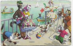 Crazy Mainzer Dressed Cats on Ocean Cruise Belgium made vintage postcard by…