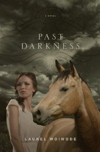 Past Darkness is such an appropriate name for this story because it is truly dark. But with most darkness in life, it eventually passes and the light shines through once again.