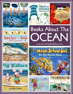 Books About the Ocean!  Some great selections for toddlers, preschool, school-aged children, perfect to use during an ocean or fish theme unit.  Reviews of each!