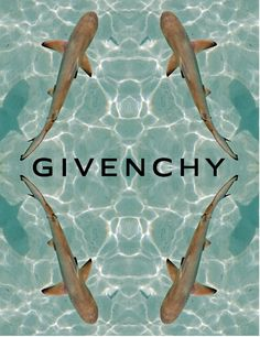 givenchy sharks campaign  www.zoeelysia.com