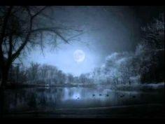 Moonlight Sonata - Maria João Pires ( Beethoven )