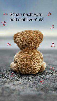 whatsapp+profilbilder+spr%C3%BCche+zum+nachdenken+teddy.jpg (564×1002)
