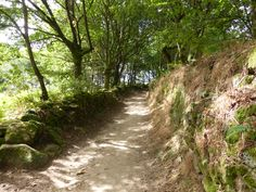 Prachtige holle wegen in Galicië  op weg naar Portomarin