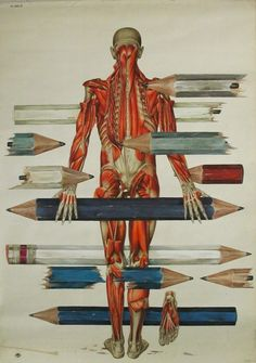 Troels Carlsen - Integrity Has No Needs    Acrylics on antique anatomy chart, 113 x 80.5cm