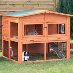 outdoor bunny cages - Yahoo Canada Image Search Results