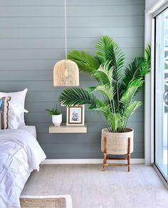 Can you feel the breeze? Coastal tones and natural fabrics provide plenty of inspiration for your beachy styled. 20 tips will help you improve the environment in your bedroom . (Read more) Interior Plants, Decor Interior Design, Interior Decorating, Coastal Interior, Decorating Ideas, Cross Back Dining Chairs, Townhouse Interior, Feature Wall Bedroom, Freedom Furniture