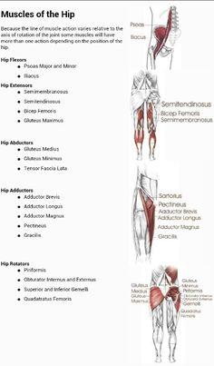 Summit Medical Group - Piriformis Syndrome Exercises ...