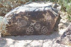 Hohokham Petroglyphs <3  Tohono Chul Park, Tucson, Arizona